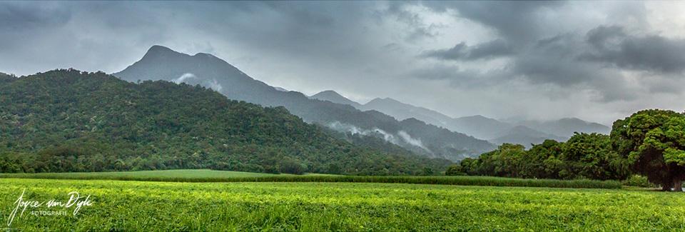 Mossman-Gorge-Panorama-2