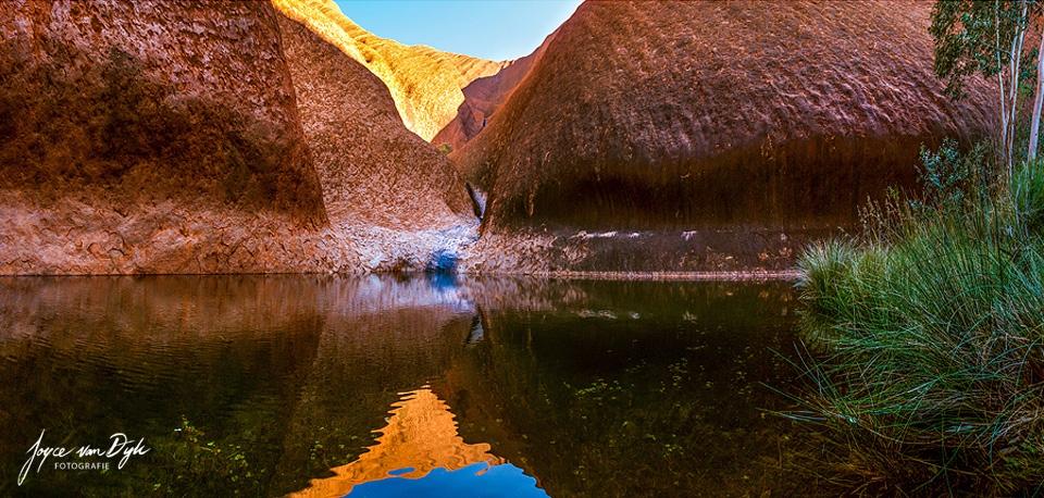 a-Uluru-waterhole